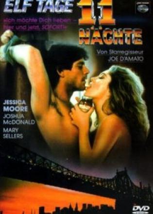 Cuộc Tình 11 Ngày Đêm (1987)